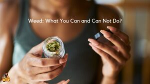 Weed: What You Can and Can Not Do?
