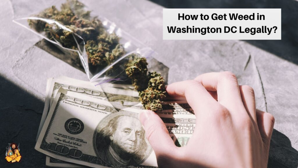 Get Weed in Washington DC Legally